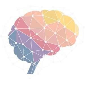 neuropsicología  - neuropsicologia 300x300 - neuropsicología